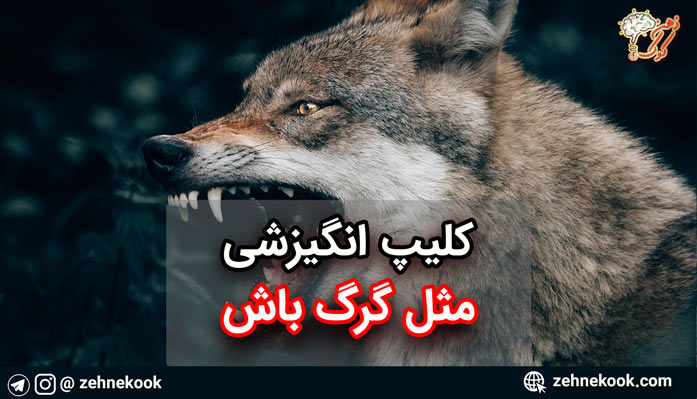 کلیپ انگیزشی مثل گرگ باش
